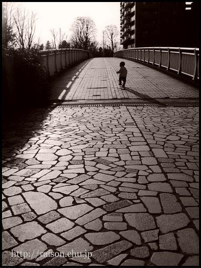 懐かしの道。