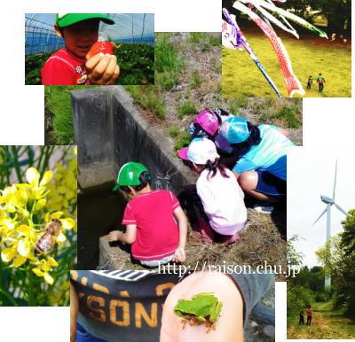 自然と触れ合う子供たち。