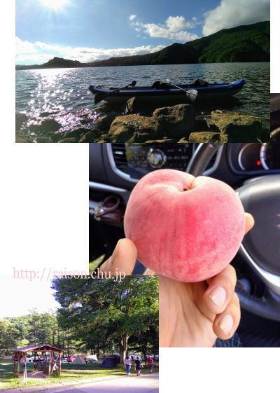 美味しい桃、福島の特産品。