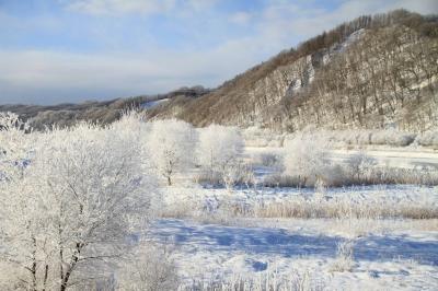 穂別の樹氷3