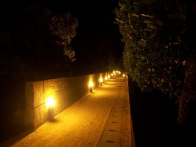 渡名喜島夜