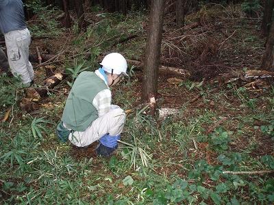森林ボランティア01
