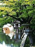 06-12-16_19-51石川.jpg