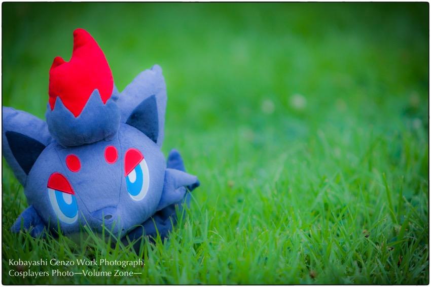 pokemon-11.jpg