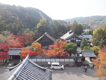 20121113南禅寺2