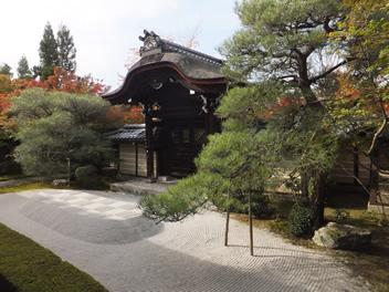 20121113永観堂2