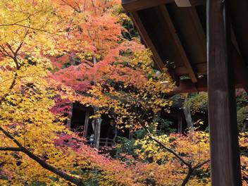 20121113永観堂3
