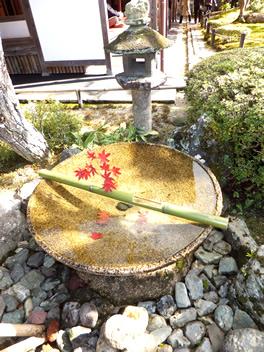 20121114圓光寺2