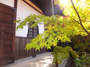 20121114圓光寺5