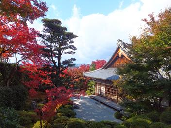 20121114金福寺1
