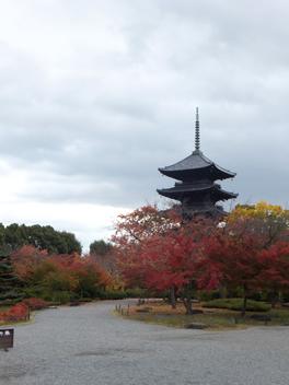 20121115東寺2