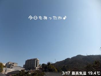 20140317空