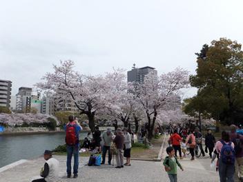 20140403お花見8