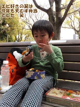 20140403お花見3