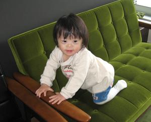 優ちゃんとカリモク60
