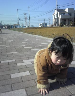優ちゃん-お散歩13
