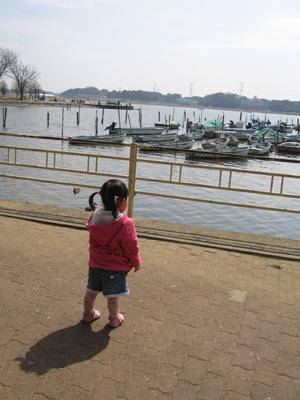 手賀沼公園2013_01