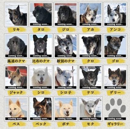 南極犬.jpg