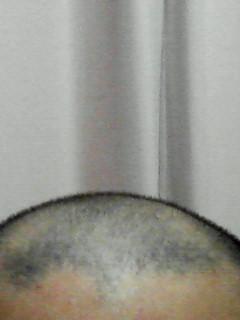 200802110056000.jpg
