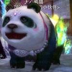 パンダ2次形態特色