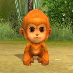 猿神1次形態