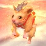 金鼠1次形態