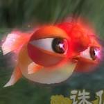 金魚1次形態