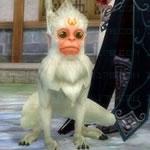 仙界灵猴1次形態