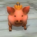 豚猪1次形態