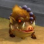 豚猪2次形態