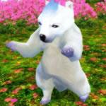 白熊1次形態