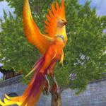 妙羽の鳥3次形態