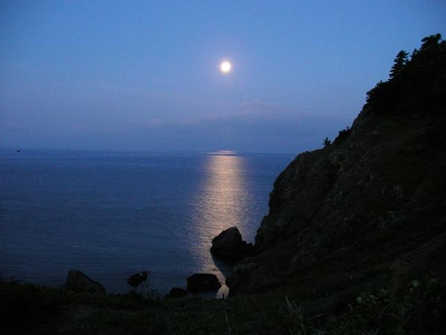 願掛より月