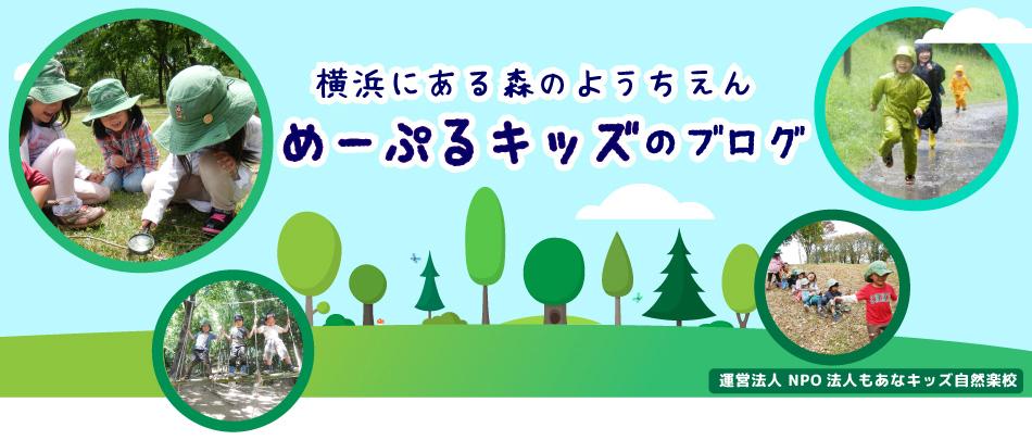 めーぷるキッズのブログ