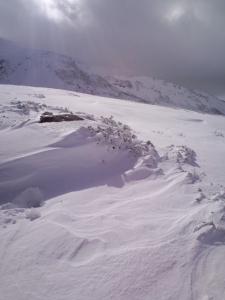 立山の新雪