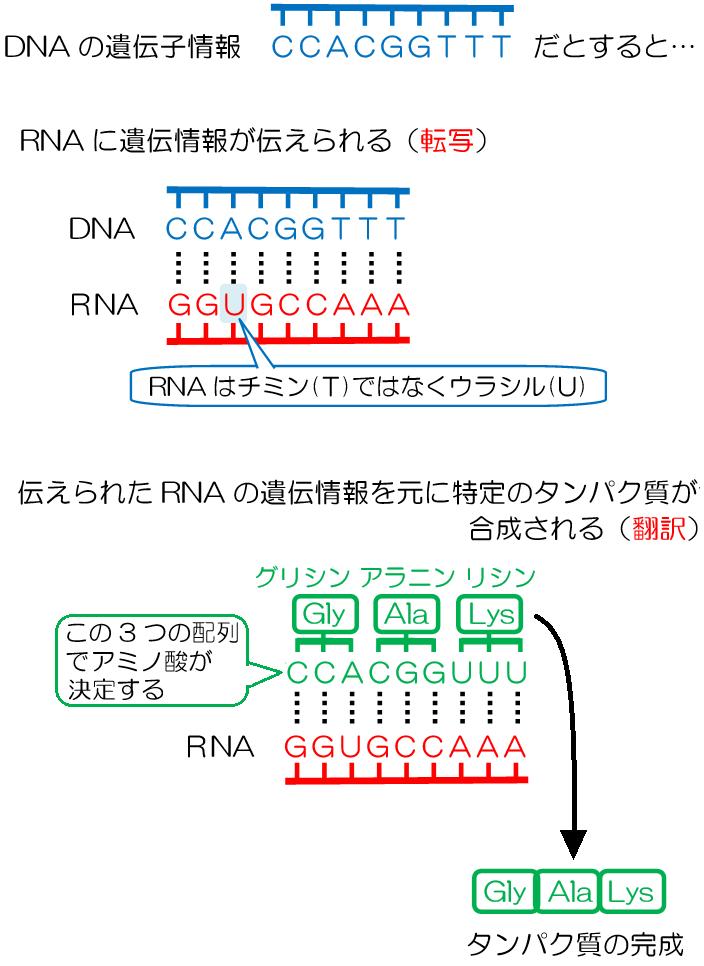 p.405-2