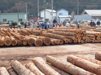 八鹿木材市場