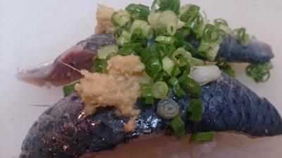 金太郎いわしの握り寿司