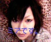 20110112081755.jpg