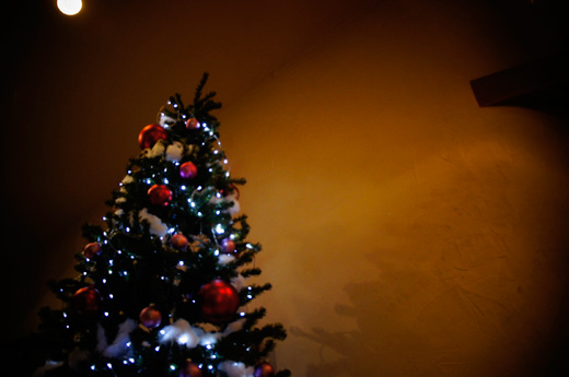 クリスマスツリー 県庁前 石川県