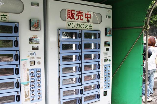アシカさんのエサ自動販売機