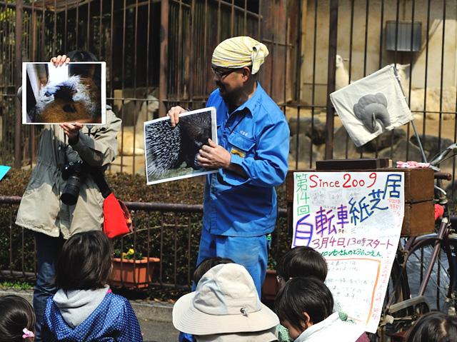 とべ動物園の自転車紙芝居にてアフリカタテガミヤマアラシの赤ちゃんの紹介です。