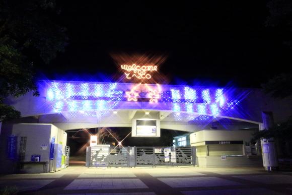 8月11日の夜のとべ動物園イベント