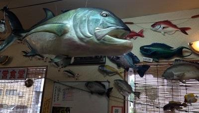 魚汁 (2).jpg