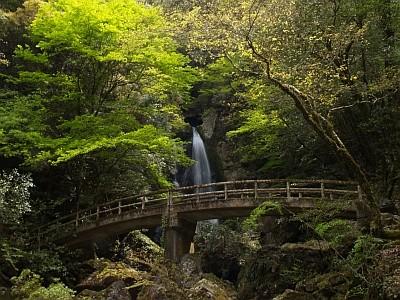 長沢の滝1 (1024x768 312kb)