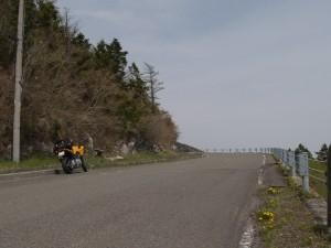 東津野城川林道