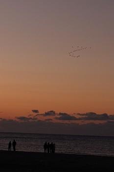 2009年初日の出間近な空