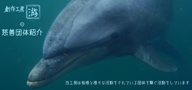 HPTOP用-游の慈善団体紹介