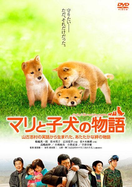 マリと子犬の物語 DVD