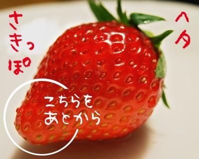 130202 F.shikinosato 03